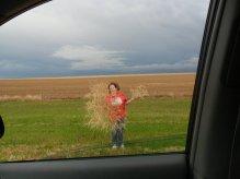 Tumble_weeds