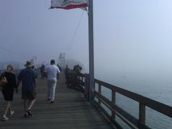 fog_in_california
