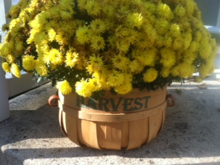 This is so cute and simple! Find a deep basket and place seasonal flowers in it.
