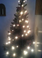small_christmas_tree_ideas