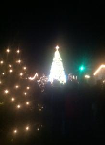 tall_christmas_trees