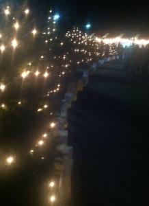 lights_on_trees