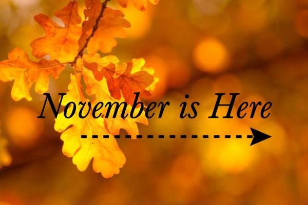 how to celebrate november