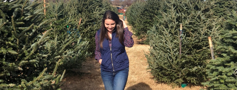 flower mound christmas tree farm